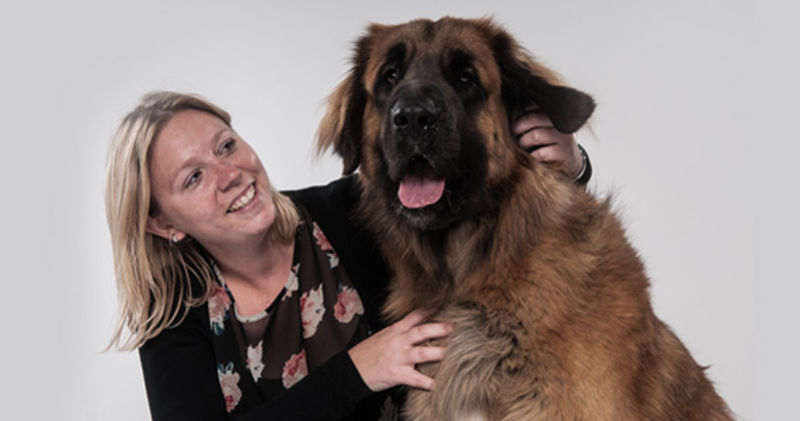 dating partnersuche im kostenlos hunde wien internet  Bärenwald Arbesbach. Bärenwald Arbesbach.